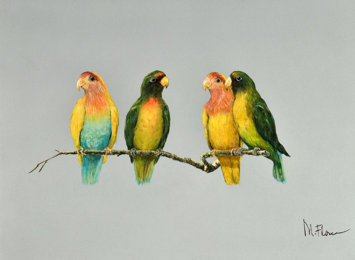 Four Colly Birds - Miguel Flores