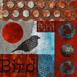 Birrrrrrd - JD Van Rooyen Art