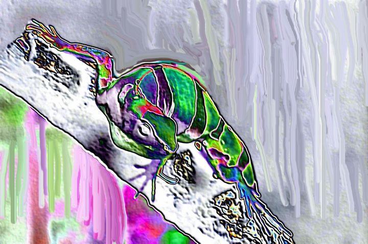 Lizard nr 3 - Rene art