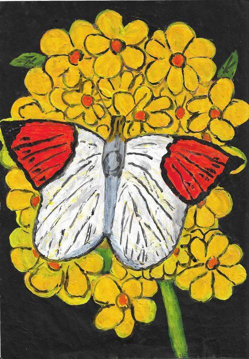 Butterfly on yellow flowers - Rene art