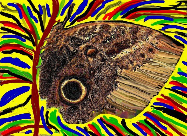 Owl butterfly - Rene art