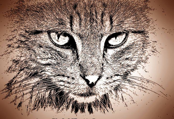 Vintage cat - Rene art