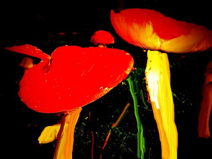 Mushroom night - Rene art