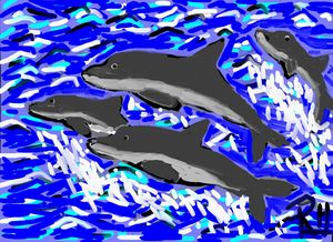 Dolphines nr2