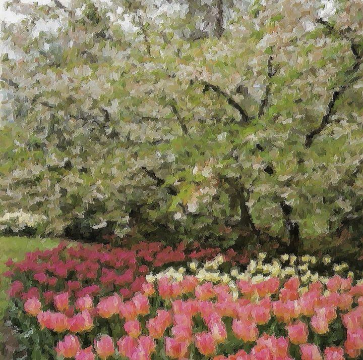 Dutch tulips nr 12 - Rene art