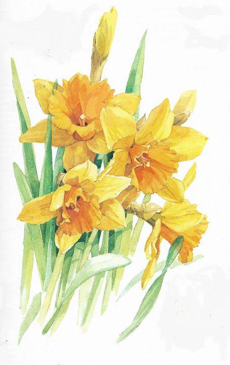 Narcissus - Rene art