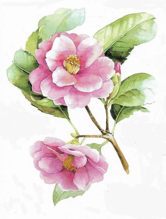 Camellia - Rene art