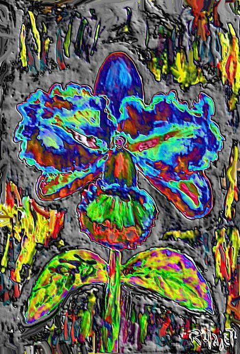 Rare orchid nr 25 - Rene art