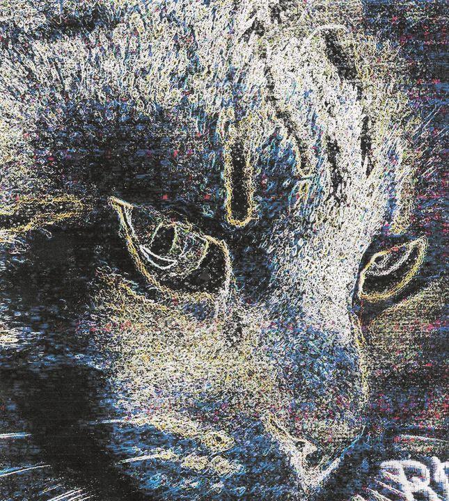 The cat eyes - Rene art