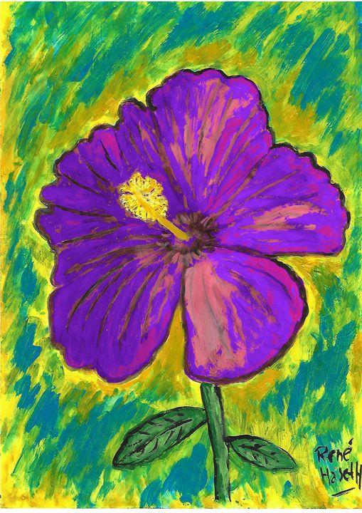 Purle hibiscus - Rene art