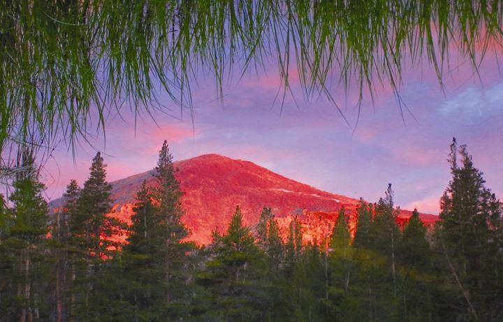 Grassy Glassy Alpine Sunset - Yosemite Jade