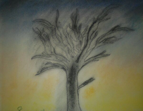 in the sky. - Sunnrey Itzu