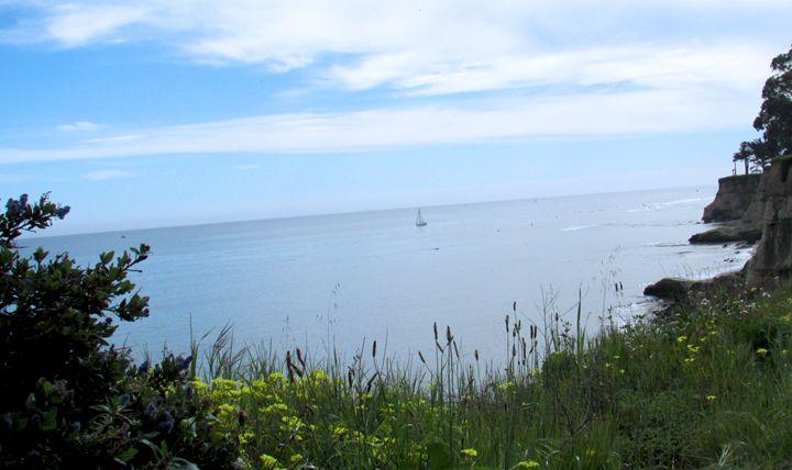 Sailing in Capitola - Sea Primavera