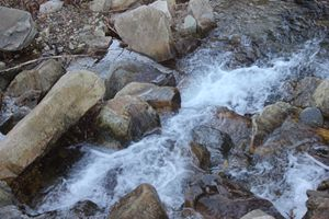 Nature Rocks with Stream