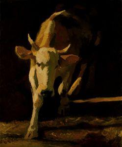 Cow - Nizamov