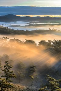 Dalat - Vietnam beauty landscape