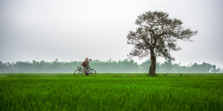 Hue Rural - Vietnam beauty landscape