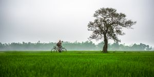 Hue Rural - Vietnam beauty landscape