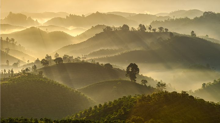 B'Lao - Vietnam beauty landscape