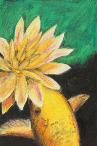 Koi And The Lotus Flower