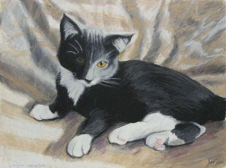 Tuxedo Kitten - Visionary Pictures