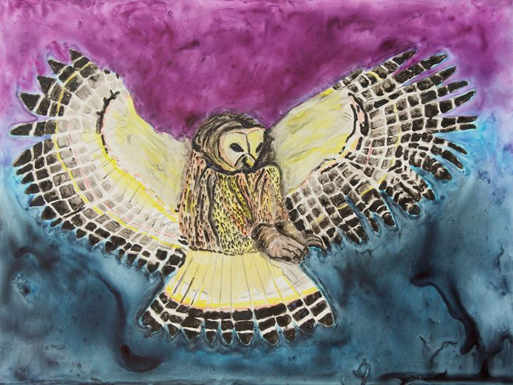 Flying Owl - Visionary Pictures