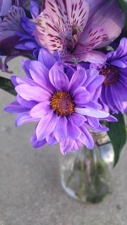 Purple love - Kelley O.