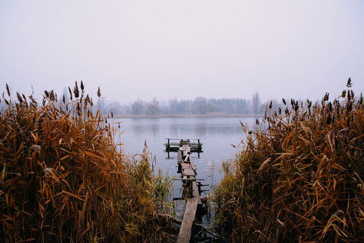The Morning on the river 2 - Anton Popov