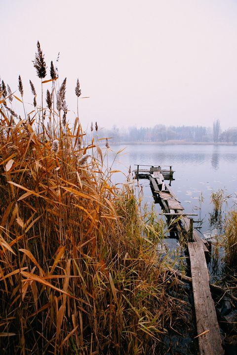 The Morning on the river - Anton Popov
