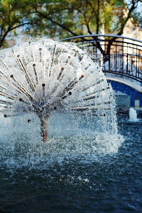 Fountain in city park - Anton Popov