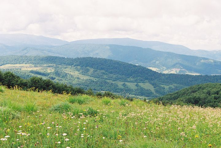 The Carpathian landscape with a view - Anton Popov