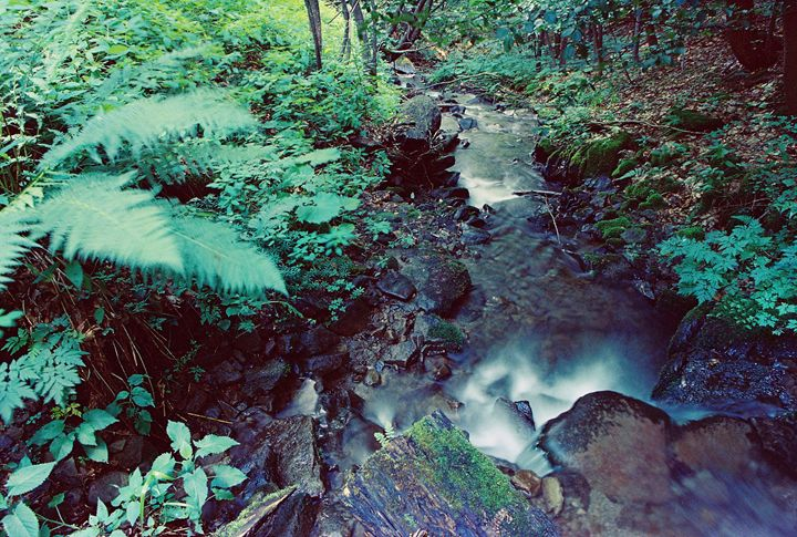 waterfall in Carpathian mountains - Anton Popov
