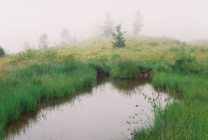 Fog in the mountains - Anton Popov