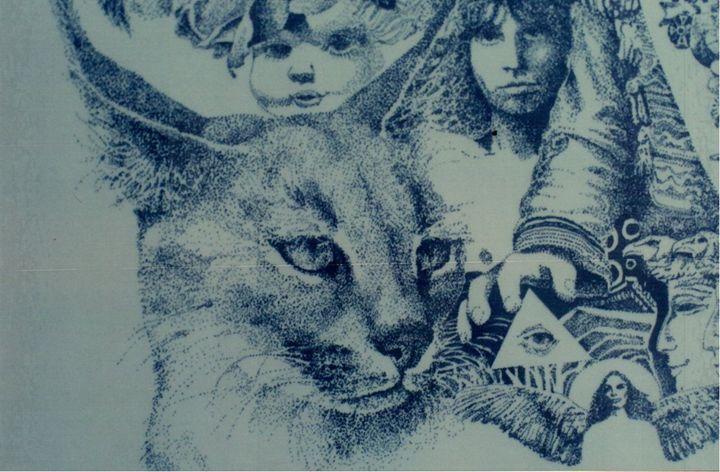 Mystery Cat.... - Danny Mckinney