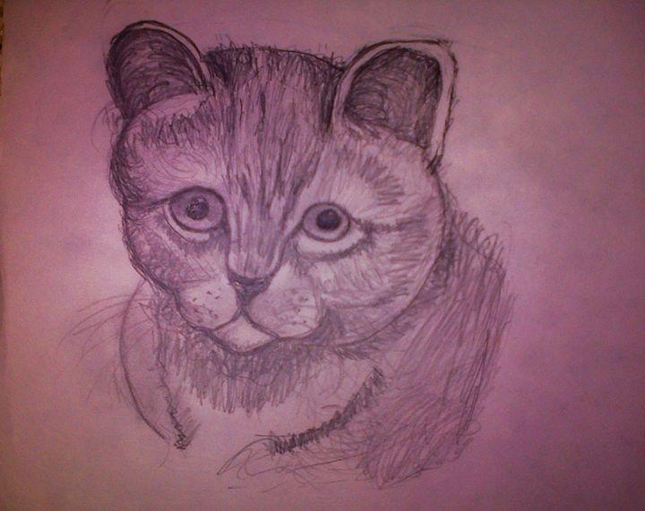 Kitten - ArtNote