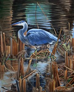 Great Blue Heron - Edward Coster