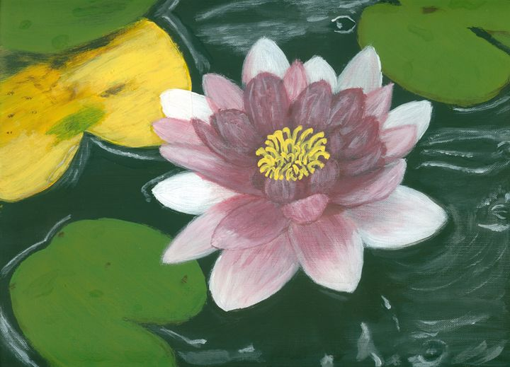 Among the Lily Pads - Kecia Ellis
