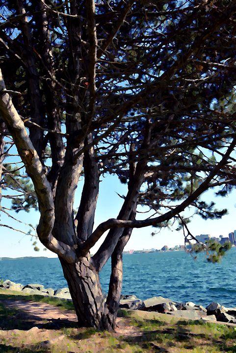 Meg's Tree - Scott McKone