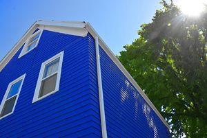 Blue House - Scott McKone
