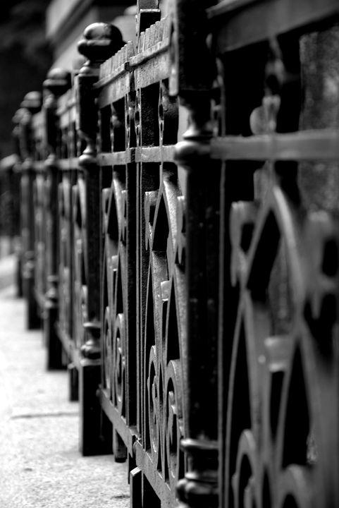 Iron fence - Scott McKone