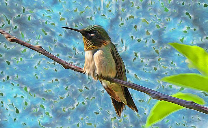 Pollen Magnet - Harmonic Imagery