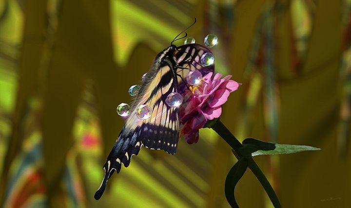 Crystal Pirouette - Harmonic Imagery