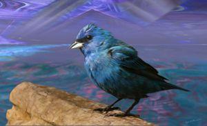 Blue Destiny - Harmonic Imagery