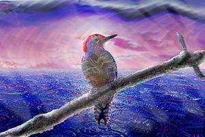Glisten - Harmonic Imagery