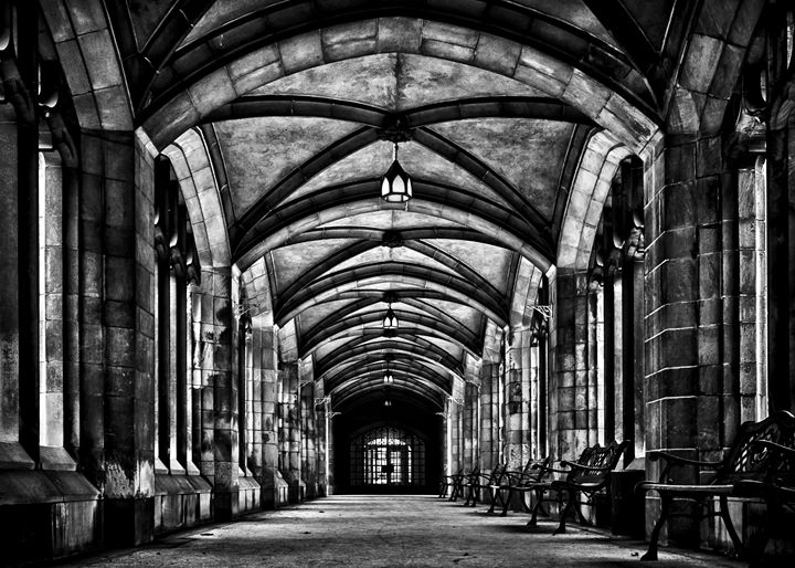 Knox College Cloister No 1 - The Learning Curve Photography