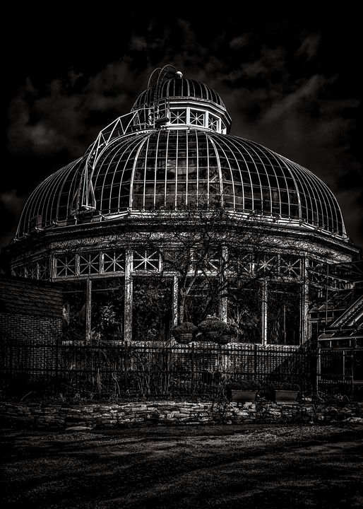 Allan Gardens Palm House 2 - The Learning Curve Photography