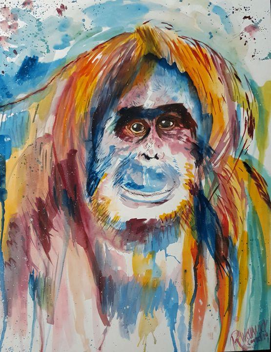 Orangutan - Rebecca