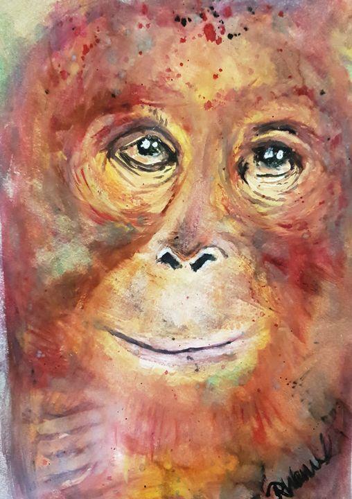 Zoo eyes - Rebecca