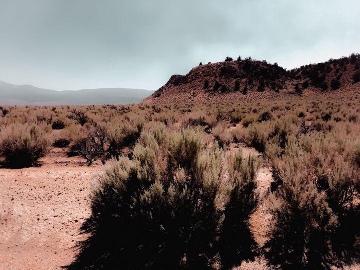 Desert scenic with foggy blue sky - TimmyLA