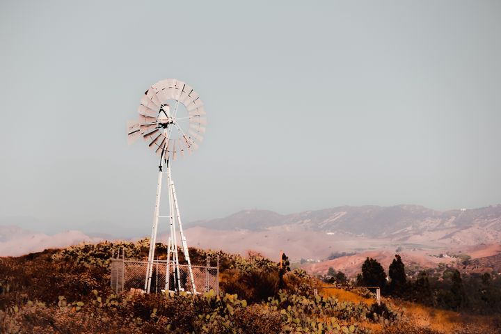 windmill and cactus garden - TimmyLA